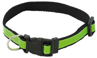 visibility dog´s collar 3. kuva